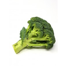 Broccoli EU (STK)