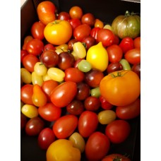 Bunter Tomaten Mix 500gramm (TASSE)